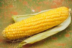 玉米黄色金黄 库存图片