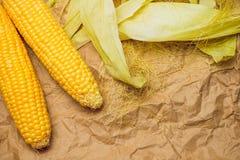 玉米黄色金黄 图库摄影