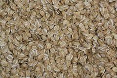玉米黑麦 库存照片