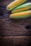 玉米 在老土气橡木桌上的新鲜的玉米 免版税图库摄影