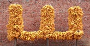 玉米`山` 库存照片