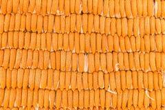 玉米backgroun,堆玉米 免版税库存图片