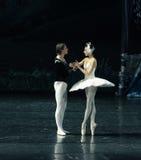 王子和天鹅坠入爱河在第一视域芭蕾天鹅湖 库存照片