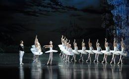 王子和天鹅坠入爱河在第一视域芭蕾天鹅湖 免版税库存照片