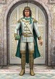王子在童话宫殿 皇族释放例证