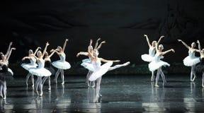王子的天鹅女孩和在中间芭蕾天鹅湖的Ojta保护 免版税库存照片