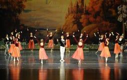 王子芭蕾和女孩围拢的花天鹅湖 库存图片