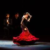 玛丽亚页,西班牙佛拉明柯舞曲舞蹈家 库存图片