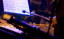 玛丽亚Ylipaa执行活在4月28日爵士乐 免版税库存照片