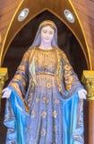 玛丽保佑的维尔京 库存照片