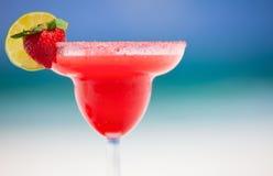 玛格丽塔酒草莓 免版税库存图片