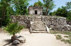 玛雅人墨西哥寺庙尤加坦 库存图片