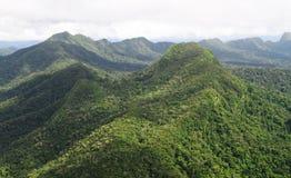 玛雅人山北部森林储备 库存图片