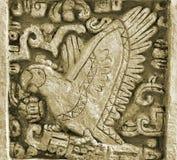 玛雅人艺术鸟 库存照片