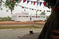 玛雅人Devi寺庙在蓝毗尼 免版税图库摄影