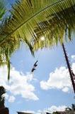 玛雅印地安人通过空气在肋前缘玛雅人市中心飞行 库存图片