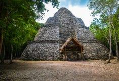 玛雅古老金字塔 免版税图库摄影