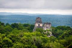 玛雅寺庙上面在蒂卡尔国家公园-危地马拉的 免版税库存图片