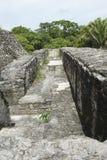 玛雅寺庙 免版税库存图片