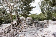 玛雅废墟加点尤加坦海岸 库存照片