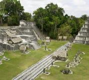 玛雅废墟在密林Tikal 库存照片