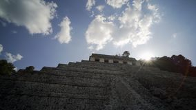 玛雅废墟在帕伦克,恰帕斯州,墨西哥 股票录像