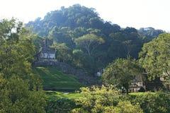 玛雅废墟在帕伦克,恰帕斯州,墨西哥 图库摄影