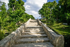 玛雅废墟楼梯石头 免版税库存照片