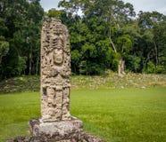 玛雅废墟的被雕刻的史特拉- Copan考古学站点,洪都拉斯 免版税库存图片