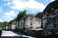 玛雅废墟看法  免版税库存照片