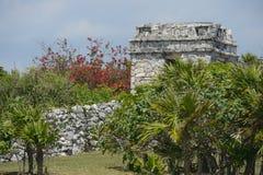 玛雅废墟 库存图片