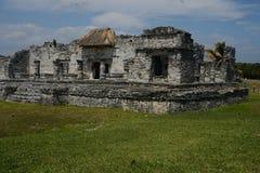 玛雅废墟 免版税库存照片