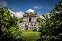 玛雅废墟- Tulum,墨西哥 图库摄影