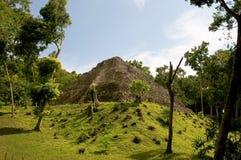 玛雅废墟yaxha 免版税库存照片
