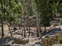 玛雅文明科潘考古学站点,离与危地马拉的边界不远 这是资本的主要古典 库存照片