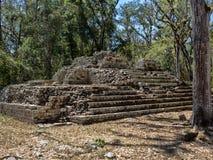 玛雅文明科潘考古学站点,离与危地马拉的边界不远 这是资本的主要古典 库存图片