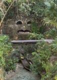 玛雅石面具面孔在密林 免版税库存照片