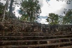 玛雅金字塔废墟在密林的 科巴 墨西哥,尤加坦 库存照片