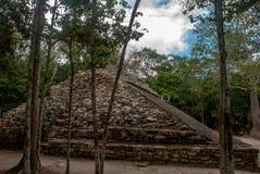 玛雅金字塔废墟在密林的 科巴 墨西哥,尤加坦 免版税库存照片