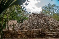 玛雅金字塔废墟在密林的 科巴 墨西哥,尤加坦 免版税库存图片