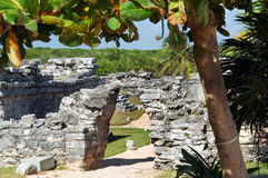 玛雅金字塔, Tulum,墨西哥 库存照片