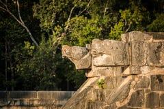 玛雅风景 图库摄影