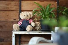 玩偶在家装饰的玩具熊婴孩 图库摄影