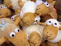 玩偶绵羊 库存照片