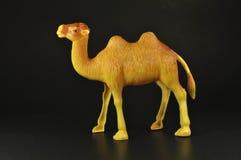 玩具在黑色的骆驼褐色 库存图片
