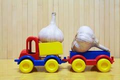 玩具塑料汽车用大蒜 免版税图库摄影