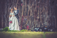 玩具婚礼 免版税图库摄影