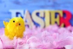 玩具小鸡、羽毛和词复活节 免版税库存照片