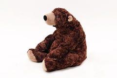 玩具棕熊 免版税图库摄影