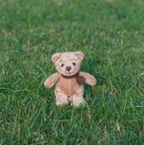 玩具熊与围巾的褐色颜色 免版税图库摄影